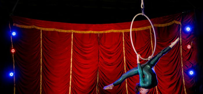 Flipside Circus Cabaret