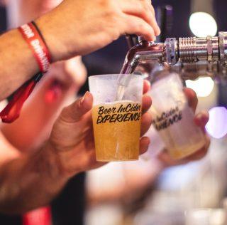 Beer InCider Drops Insane 2019 Lineup