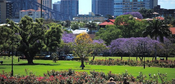 Brisbane's Top 5 picnic spots