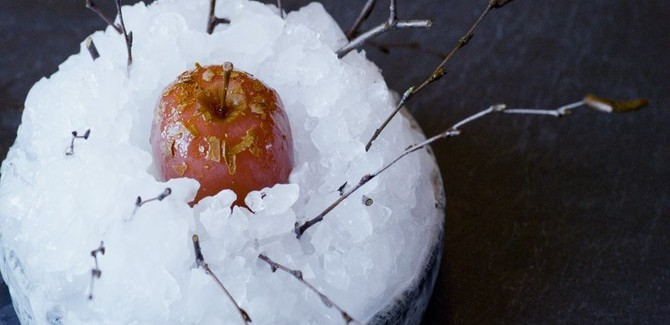 Review of Noma: My Perfect Storm