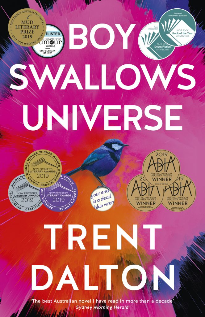 Book Cover of Boy Swallows Universe