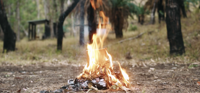 From the Ashes a Fire Shall be Woken: IMA's Tim Riley Walsh