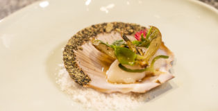 Scallop on a plate-Palette
