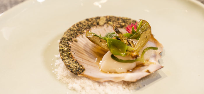 HOTA Plates Up New Dining Experiences